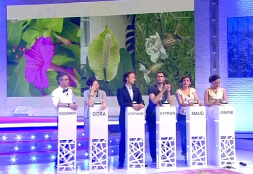 French Tv2 Pupitres Maxidomes A Ccvb 14 Mai 2014 News